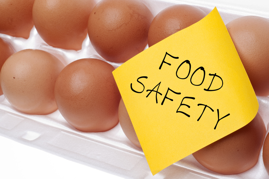Eggs Can Carry Salmonella Food Safety Concept Concept with Brown Egg and Yellow Note.